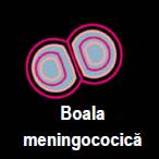 boalamenin