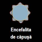 encefalitacap